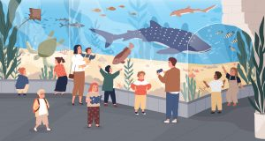aquarium - places in town - english for kids - lingokids