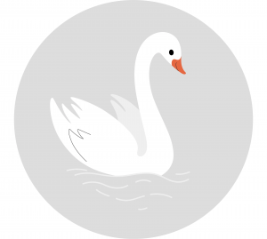 swan - english for kids - lingokids