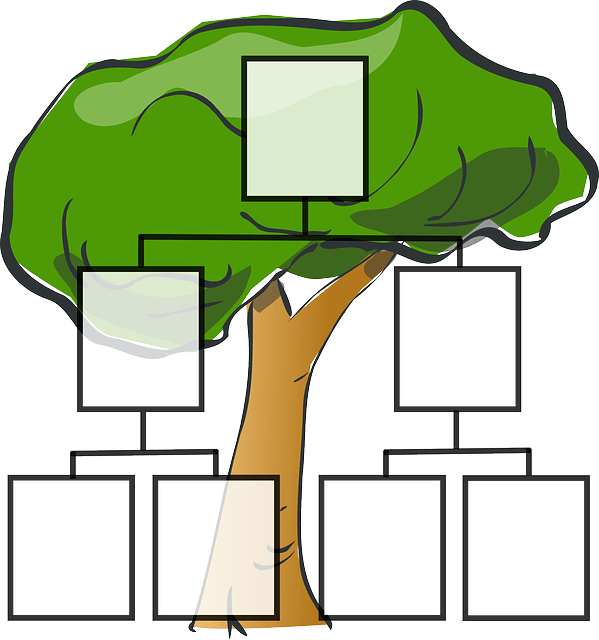 Family Tree - Family Vocabulary