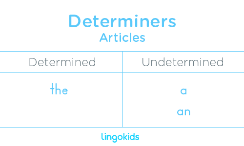 Articles - Determiners in English