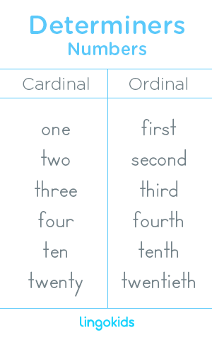 Numbers - Determiners in English